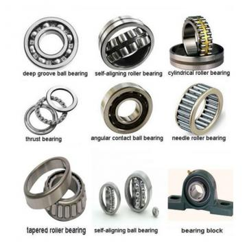NUP224-E-M1-C3 FAG Cylindrical Roller Bearing