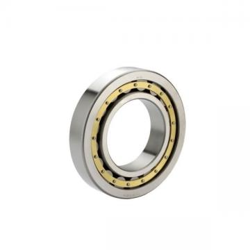 N304 W NSK Cylindrical Roller Bearing