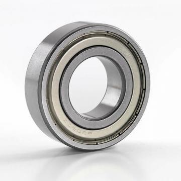 6013 ZZNR NSK Deep Groove Ball Bearing