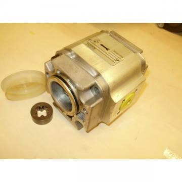 Rexroth internal gear pump 1PF2GF2-22/01 Hydraulic Motor holzpalter Hydraulic Pump